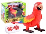 RC Papoušek