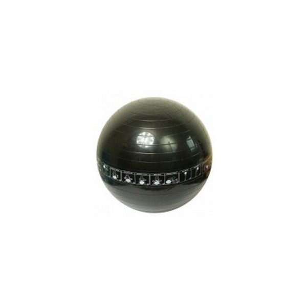 Gymnastický míč Trainer 65 cm