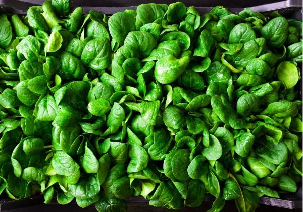 Zelené potraviny a psychika