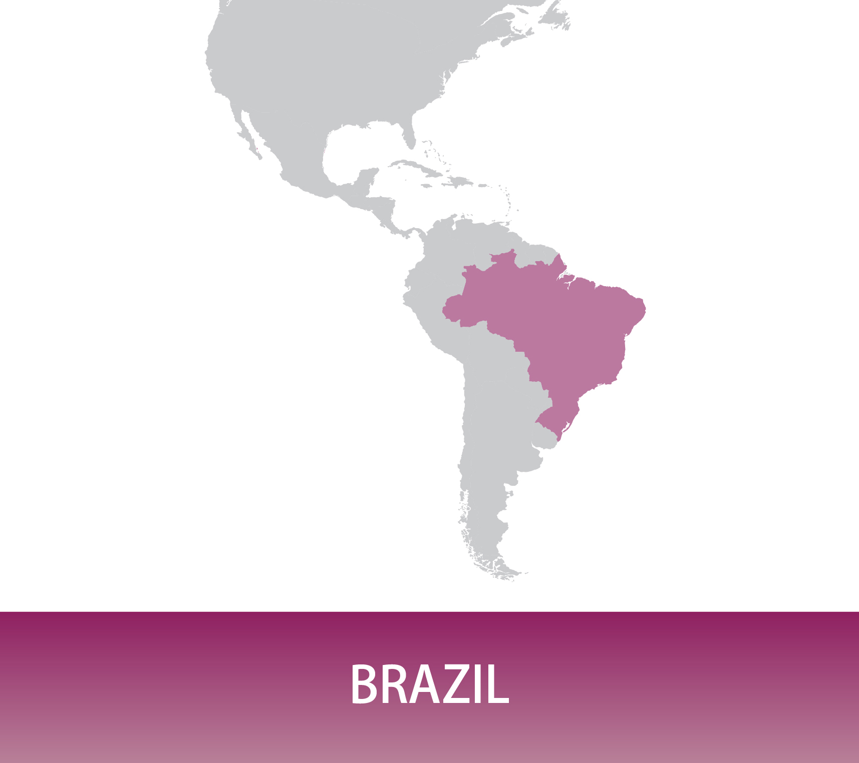 Brazil Pergamino Sul de Minas