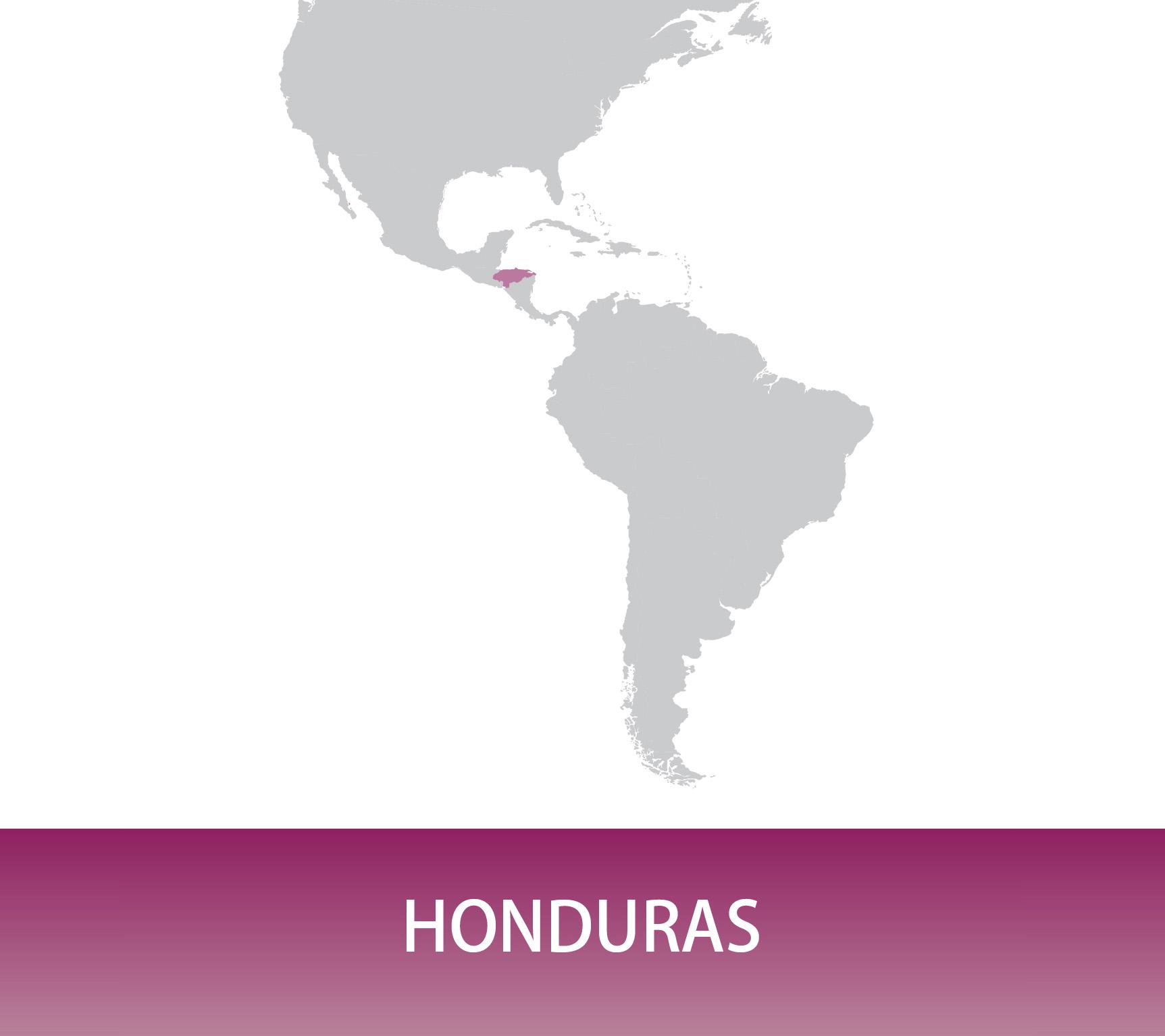 Honduras SHG San José Maresol