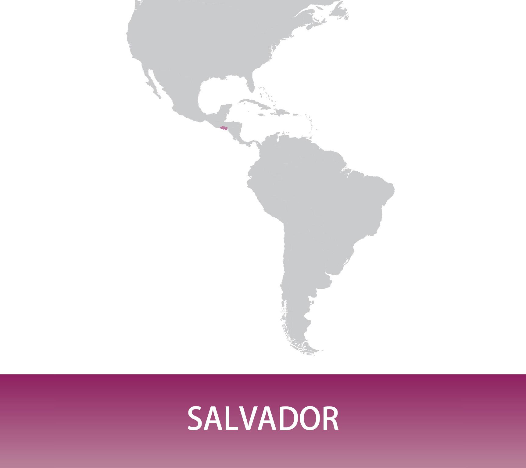 Salvador Bourbon Honey - El Carmen